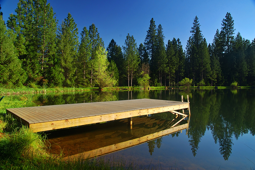Lake shore, wooden dock and tall trees.