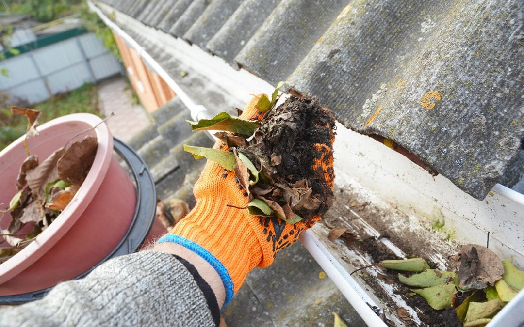 5 Tips for Cleaning Your Gutters